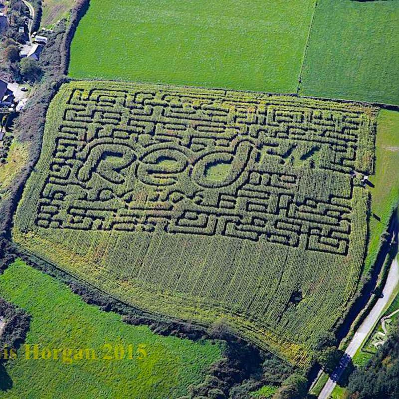 Aerial view of the Maize Maze at Smugglers Cove, Rosscarbery, Co. Cork